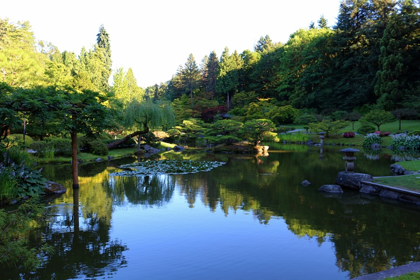 Overlooking the Seattle Japanese Garden